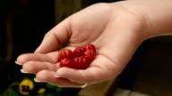 Pitanga or Surinam cherry in the Hand video