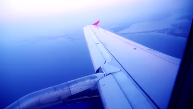 Plane Wing video