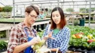 Plant nursery employee explains corn varieties to customer video