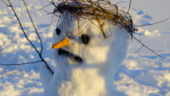 Plant twigs on the head of the snowman video