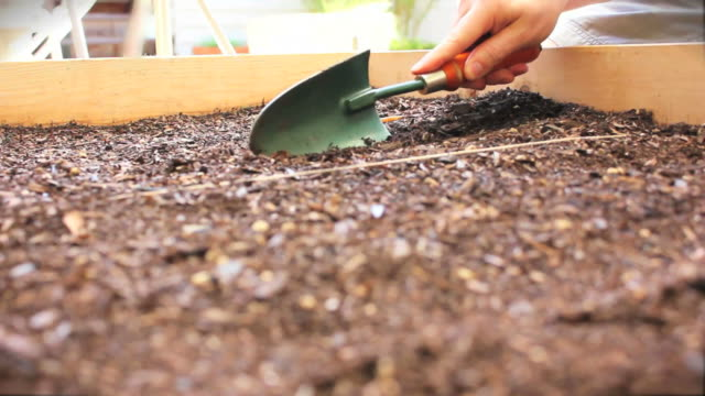 Planting Seeds (HD) video
