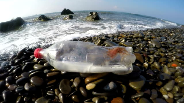 Plastic bottle brought to wild shore by sea waves video
