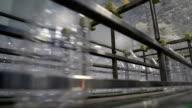 Plastic bottles on conveyor belt video