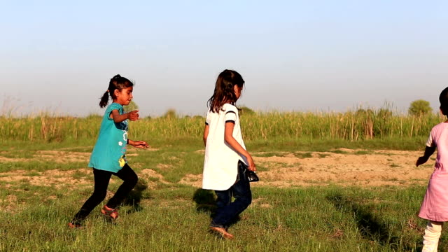 Playful Children in the Nature video
