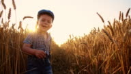 SLO MO Playful little boy among wheat ears video