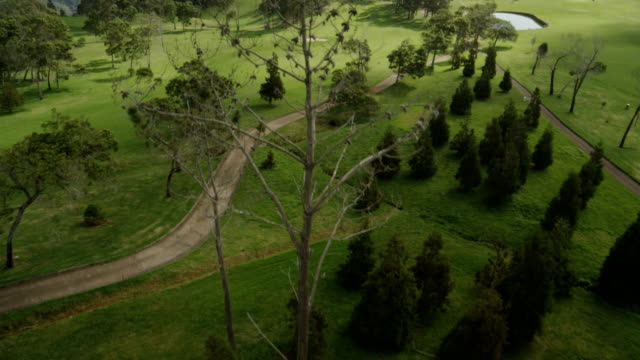 Playing field visible from the drone. Extreme long shot. video