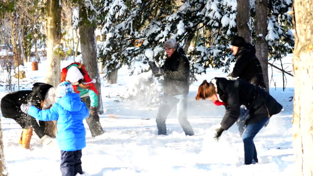 Playing in Snow video