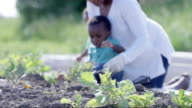 Playing in the Garden video
