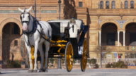 plaza de espana horse tourist walk 4k seville spain video