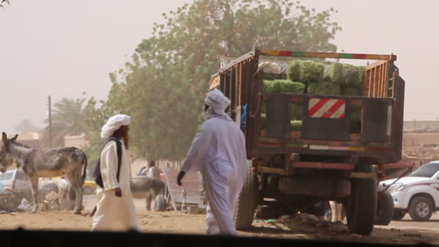 Plaza in Sudan: Truck, donkeys and veiled men video
