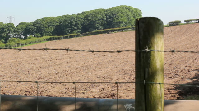Ploughed field  and fence - HD & PAL video