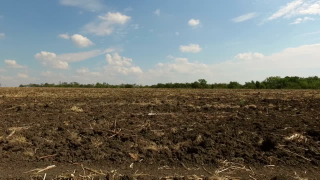Plowed field with dirt and hay video