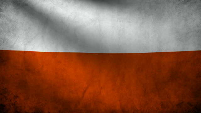 Poland flag. video