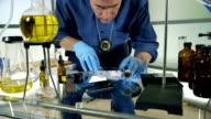 police detective dusting for finger prints video