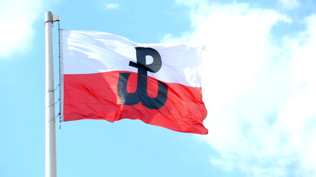 Polish flag with the symbol of Poland Fighting video