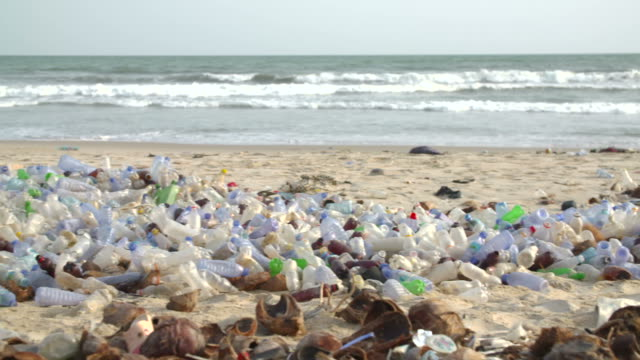 polluted beach with plastic bottles video
