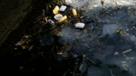 Polluted river filled with garbages video