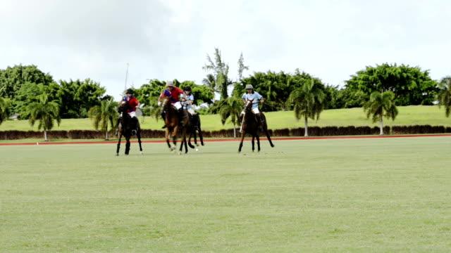 Polo Action video
