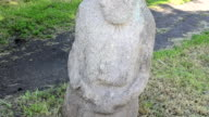 Polovtsian stone statues. Ukraine. video