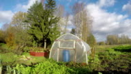 Polyethylene greenhouse in autumn, time lapse video