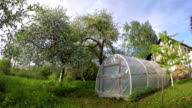 Polyethylene greenhouse in the garden, time lapse video
