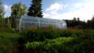 Polyethylene greenhouse in vegetable garden, time lapse video