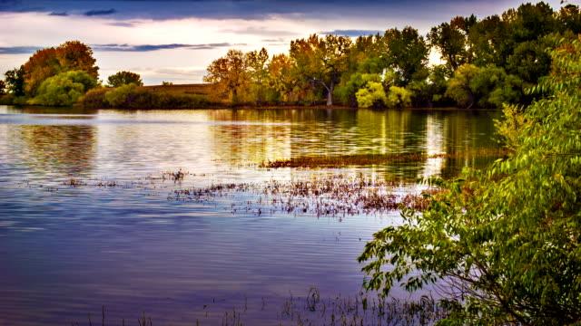 Pond after sunset video
