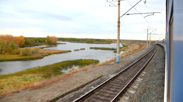 Pond and autumn forest, view from train moving on railway video