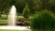 Pond with fountain video