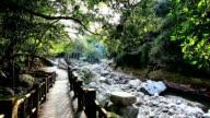 PongLai River Fish Watching Path video