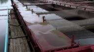 Pontoon sturgeon fish farm on a fresh water river, panning video video