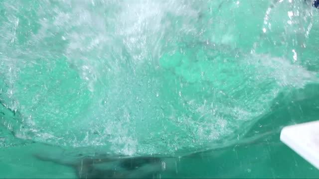 Pool Splash Cannonball cannonball dive hd video & 4k b-roll - istock
