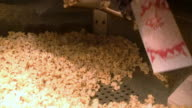 Popcorn at the Theater video