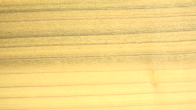 (Perfect Loop) Poplar Wood Texture video