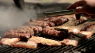 Pork meet on barbecue grill video