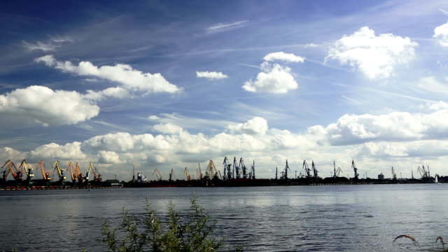Port views. Many port Cranes and ships of the efective clouds bacgound video