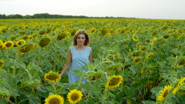 Portrait of a young woman in a blue dress walking in the sunflower field, enjoying nature. Slowmotion shot video