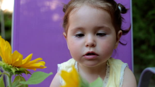 portrait of baby girl playing outdoors with sunflowers in backyard - smelling  and smiling video