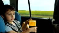 Portrait of cute boy in car video