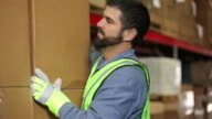 Portrait of industry worker in a shipping warehouse video