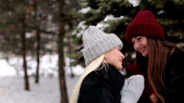 Portrait of two laughing girls in winter Park. video