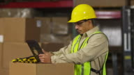 Portrait of worker in shipping warehouse with digital tablet video