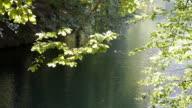 Positive Emotion at lake video
