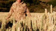 Post War Soldier In Wheat Field video
