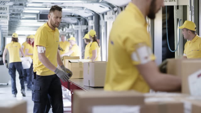 DS Postal workers sorting parcels on the conveyor belt video