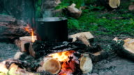 Pot on the Fire in Forest video
