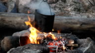 Pot with boiling water on campfire video