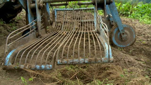 HD SLOW-MOTION: Potato harvest video