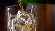 Pouring a scotch whiskey into glass with ice video