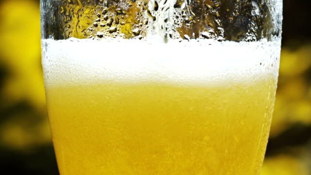 Pouring cold beer into glass video